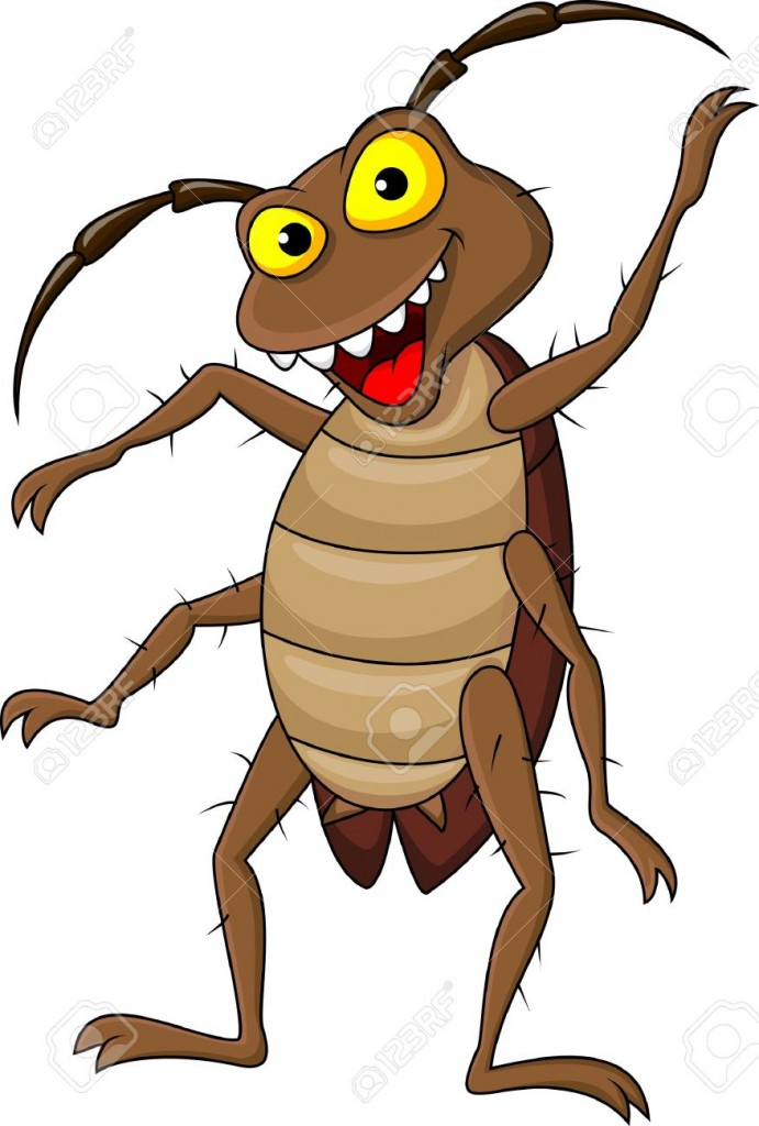THE LITTLE COCKROACH--cartoon cockroach2